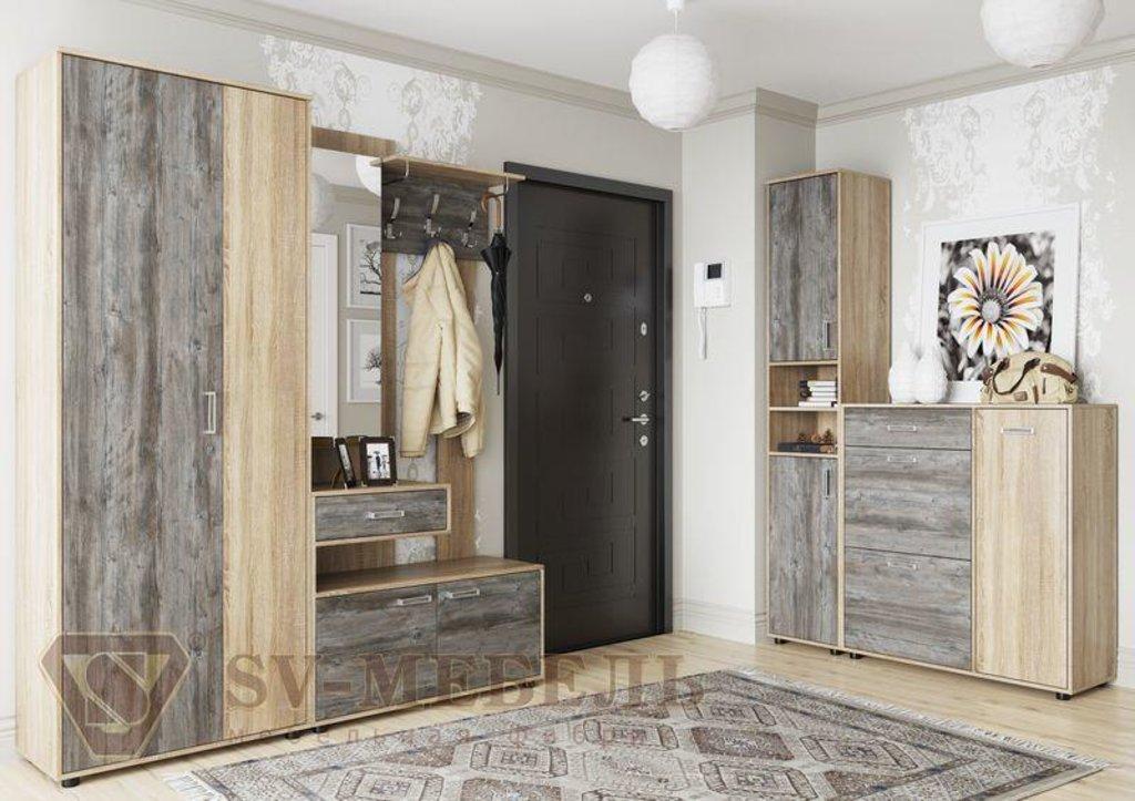 Мебель для прихожей Визит-1: Шкаф двухстворчатый (комбинированный) Визит-1 в Диван Плюс