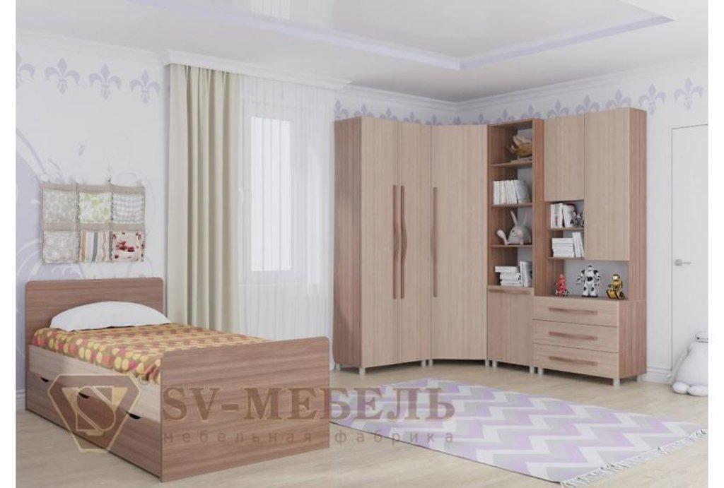 Мебель для детской Алекс-1: Шкаф двухстворчатый Алекс-1 в Диван Плюс