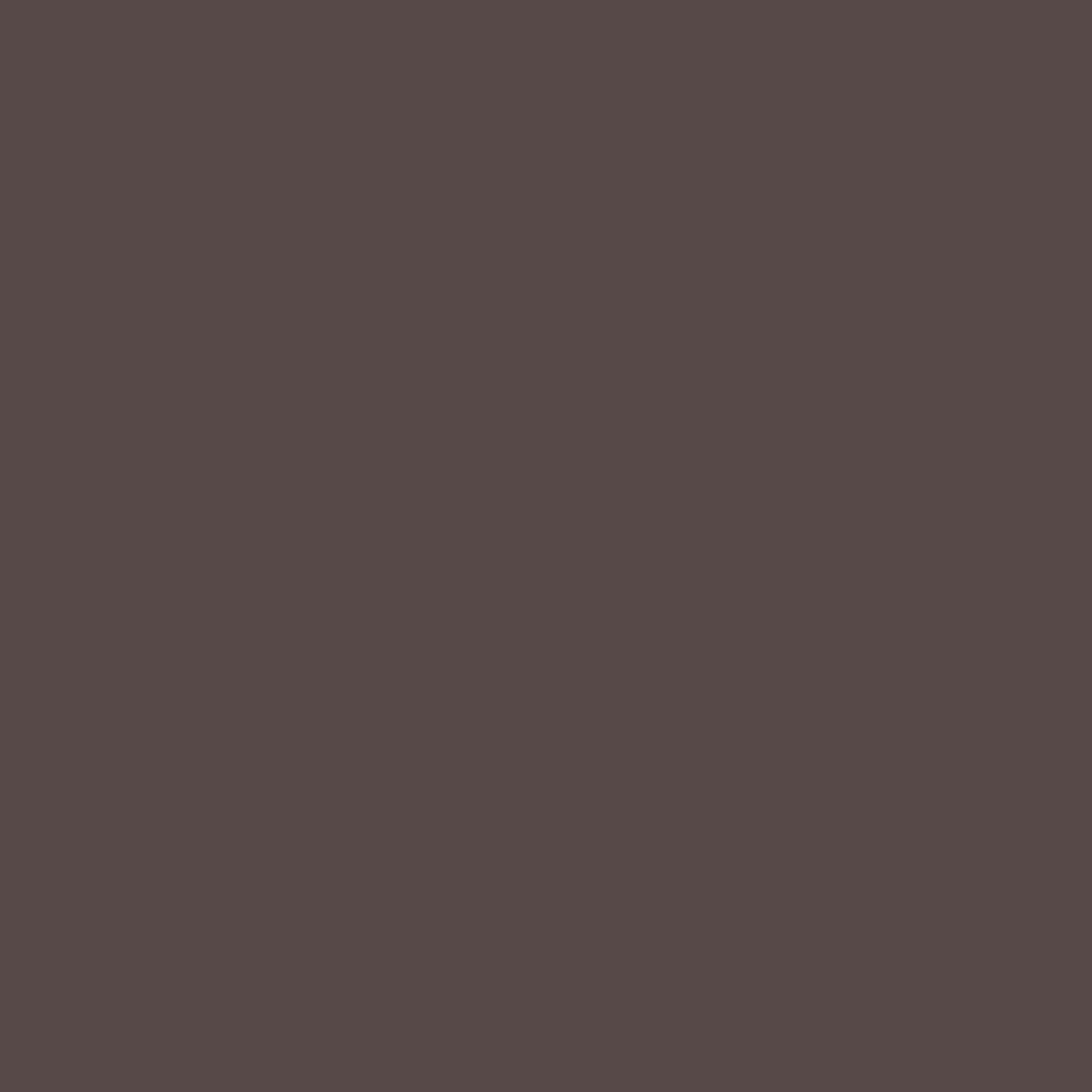 Бумага цветная А4 (21*29.7см): FOLIA Цветная бумага, 130г A4, темно-коричневый, 1 лист в Шедевр, художественный салон