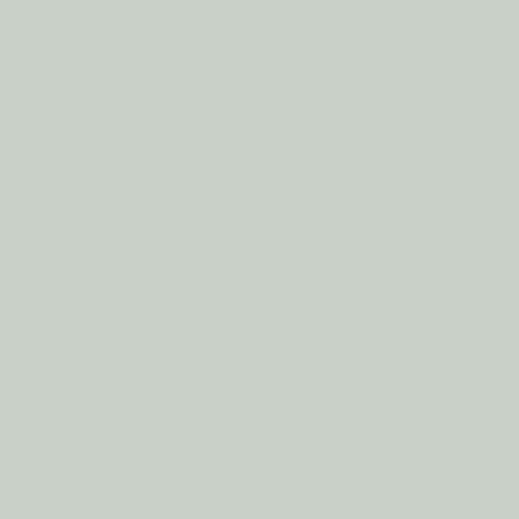 Бумага цветная 50*70см: FOLIA Цветная бумага, 130 гр/м2, 50х70см, серый стальной, 1 лист в Шедевр, художественный салон
