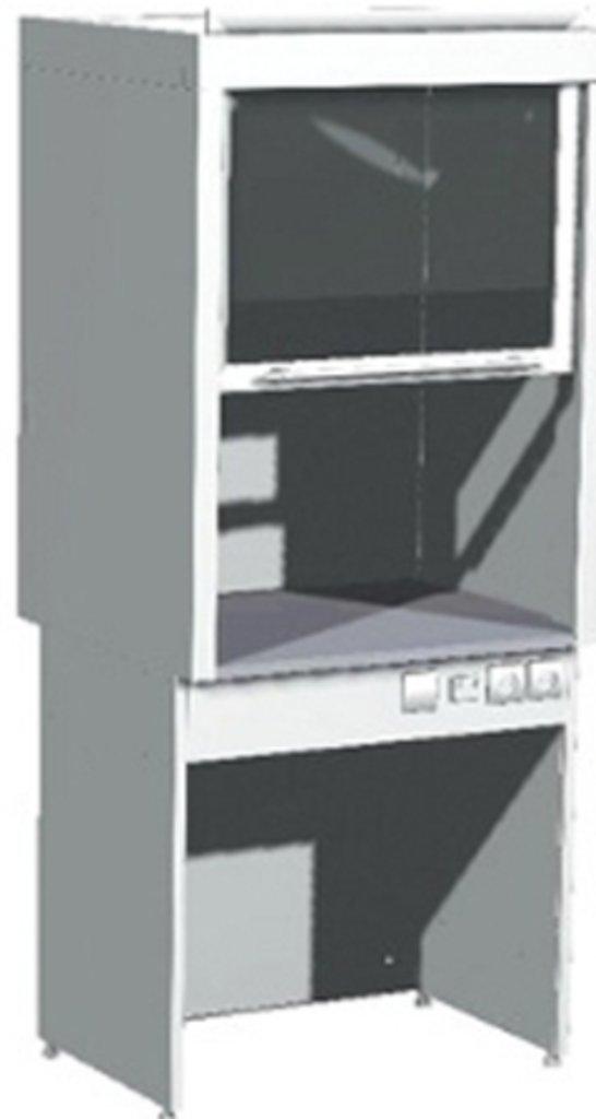 Шкафы вытяжные лабораторные: Шкаф вытяжной лабораторный ШВ-01-МСК (пластик) в Техномед, ООО