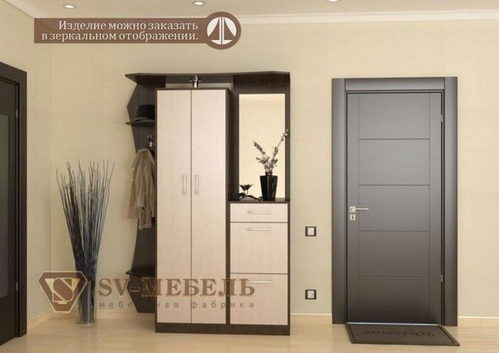 Прихожие: Мебель для прихожей Виза-6 Лондон в Диван Плюс