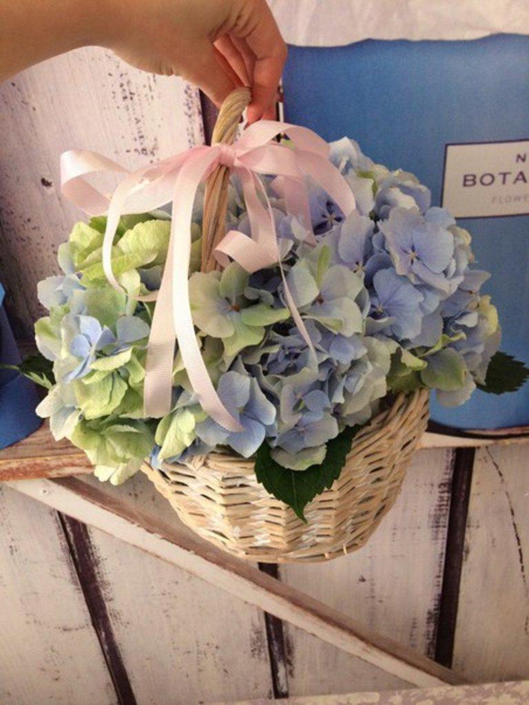 Корзины цветов: Корзинка с Гортензией в Botanique №1,ЭКСКЛЮЗИВНЫЕ БУКЕТЫ