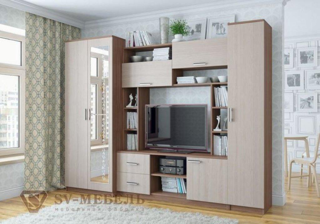 Мебель для гостиной Гамма-16: Пенал Гамма-16 в Диван Плюс