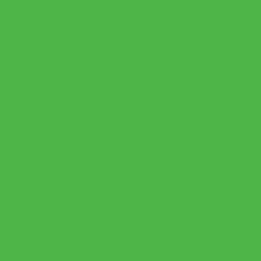 Бумага цветная 50*70см: FOLIA Цветная бумага, 300г/м2 50х70, зелёный травяной 1лист в Шедевр, художественный салон