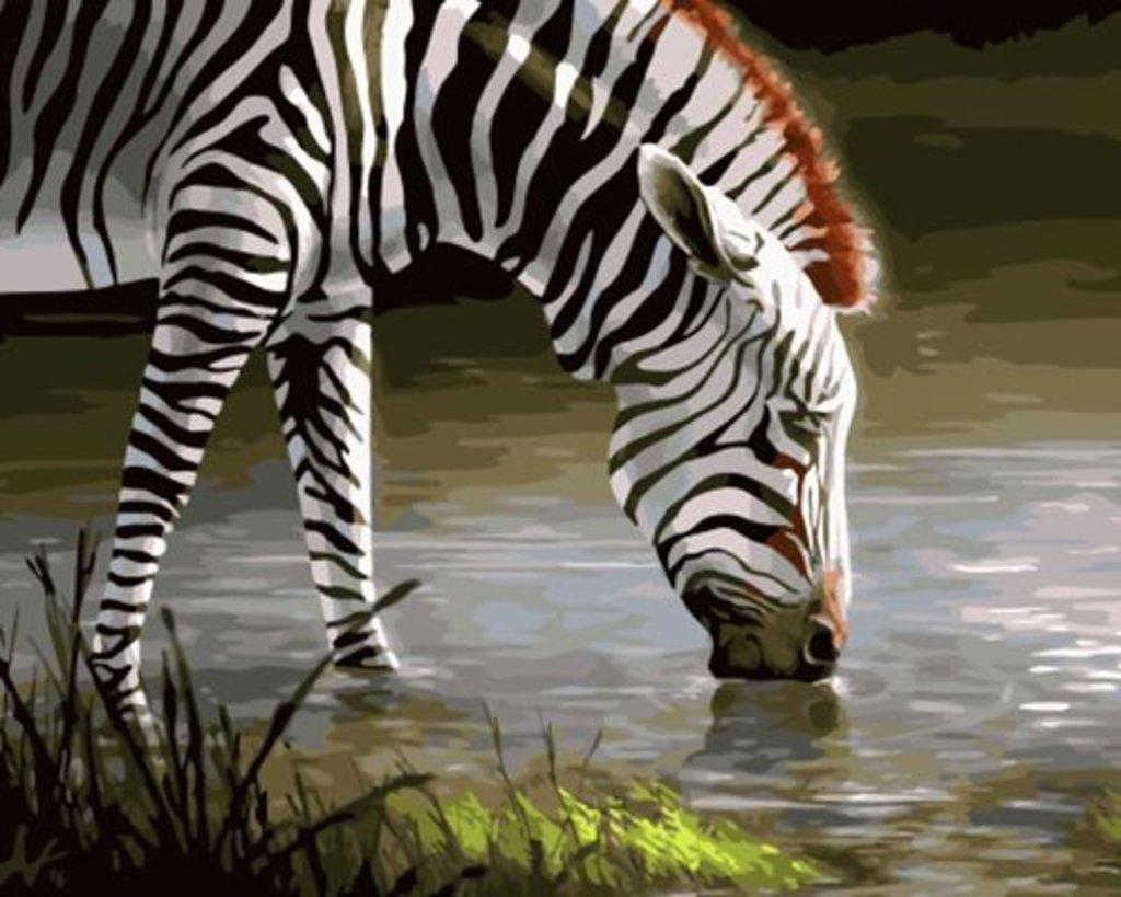 Картины по номерам: Картина по номерам Paintboy 40*50 Зебра OK10053 Эксклюзив! в Шедевр, художественный салон