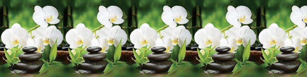 Декоративные интерьерные панели (фартуки для кухни): Интерьерная декоративная панель Белая орхидея (3х0,6м) в Мир Потолков