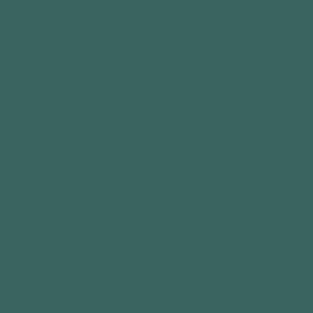Бумага для пастели LANA: LANA Бумага для пастели,160г, 21х29,7, виридоновый зеленый, 1л. в Шедевр, художественный салон